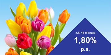 Höhere Zinsen beim Credit Europe Banke Festgeld